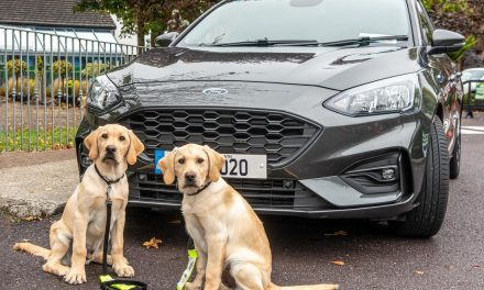 Win a 2020 Ford Focus…And Help A Very Worthwhile Cause In The Process.