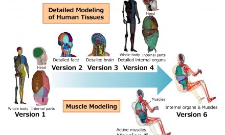 Toyota Offers Free Access to THUMS Virtual Human Body Model Software.